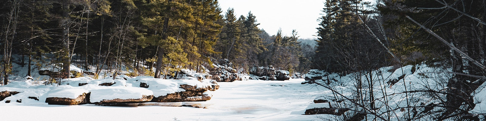 Minnesota forest and stream in winter